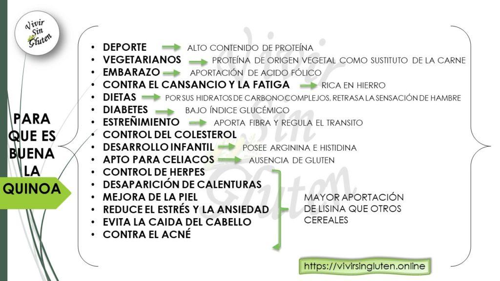 Todos los beneficios que aporta la Quinoa a nuestro organismo